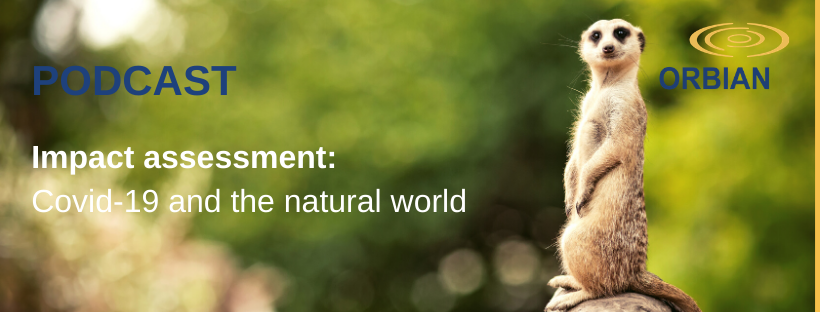 Impact Assessment Podcast: Covid-19 and the Natural World